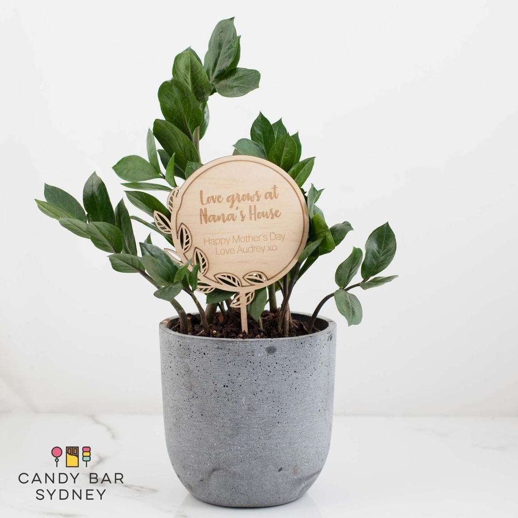 Custom Grandmother Mothers Day Planter Stick