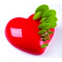 Pavoni Passion Insert KE017 3D Silicone Cake Mould