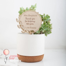 Teacher's Gift Personalised Planter Stick