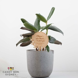 'If Nana's Were Flowers I'd Pick You' Planter Stick Style 3